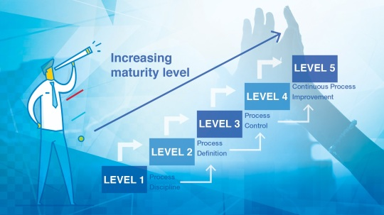 Asset Performance Management Maturity Model