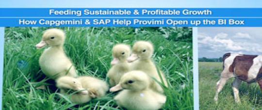 How Capgemini and SAP Help Provimi Open Up the BI Box
