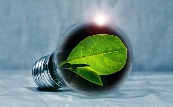 Engouement des utilities pour les start-ups digitales dans le secteur de l'énergie : de nouveaux challenges