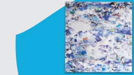 Capgemini – Rapport annuel 2017