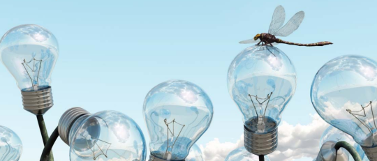 Het innovatie spel: hoe en waarom bedrijven investeren in innovatie