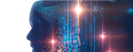 Unleashing the potential of Artificial Intelligence in the Public Sector