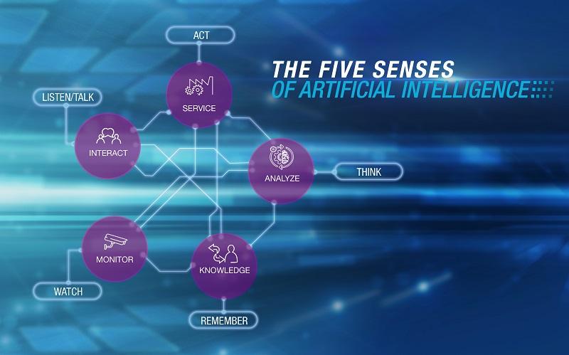 the_five_senses