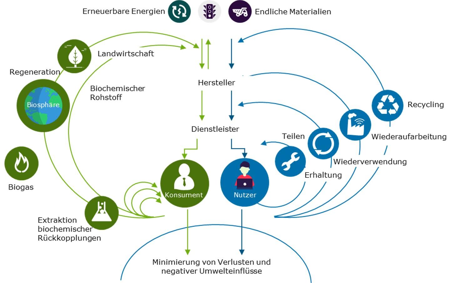 Abbildung 3 Wertekreislauf der Ellen MacArthur Foundation Capgemini Invent