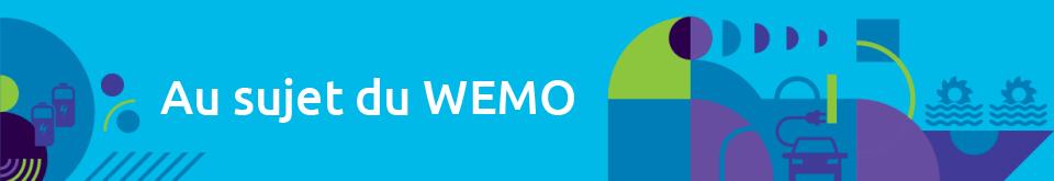 Au sujet du WEMO
