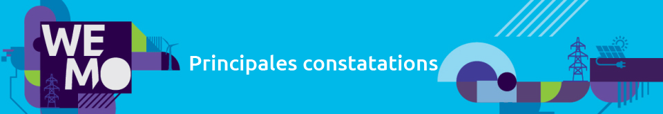 Constats Wemo 2020