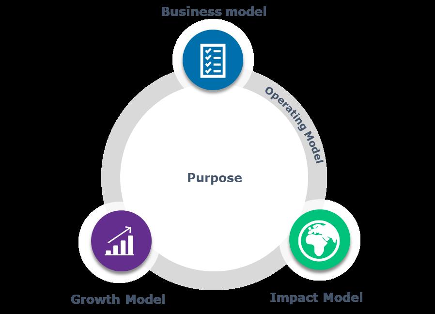 Figure 1 The Capgemini Strategic Transformation Sustainability Wheel