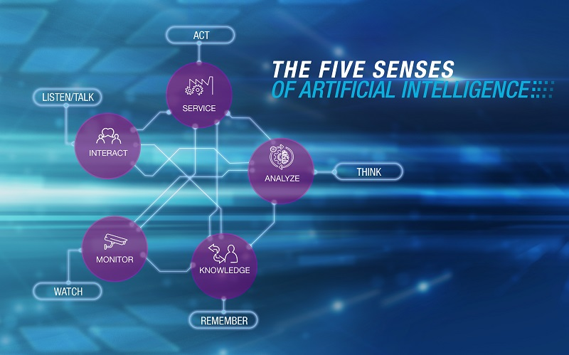 the_five_senses