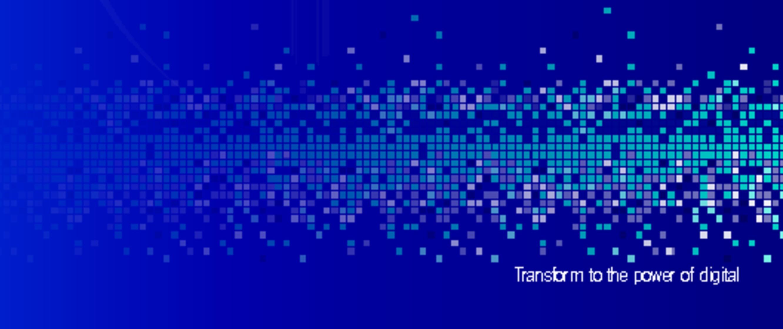 Image Result For Chief Digital Officer Netherlands