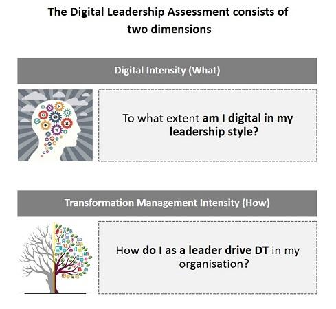 Digital Leadership Index assessment