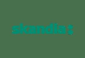 Business Intelligence at Skandia