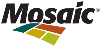 Mosaic transforms to drive better business performance - Logo