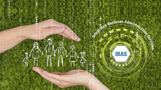 IBAS for Medicare Supplement