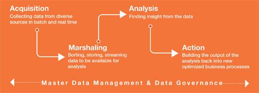 Capgemini Oracle Big Data