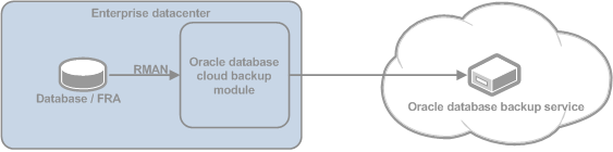 Oracle cloud backup module