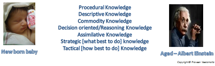 Praveen Veeramalla _ Knowledge Segregation _ Knowledge Management