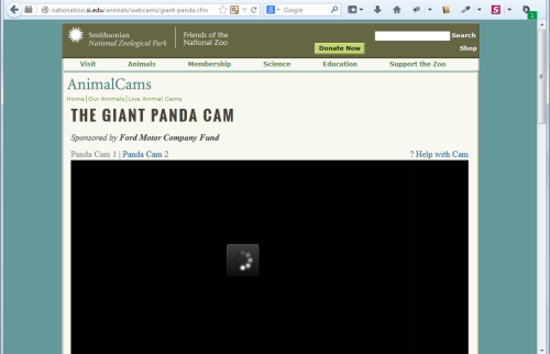 Smithsonian Zoo Animal Cam Shutdown