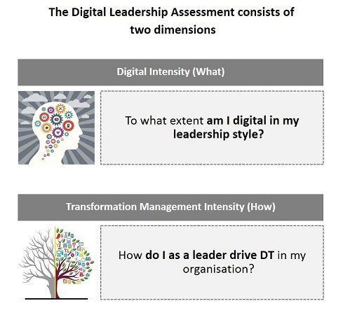 Digital Leadership Index assessment