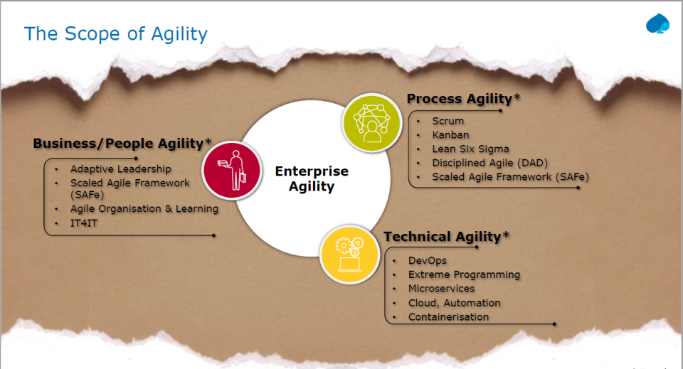 Agility in practice