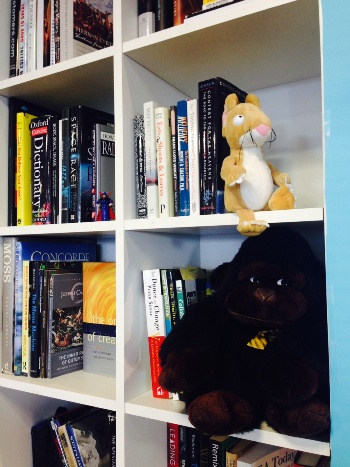 Toys and books available in the space