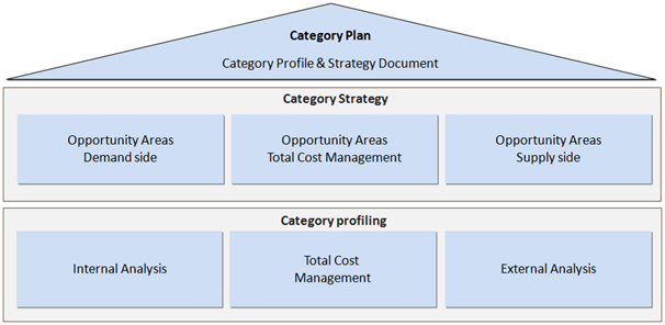 Category management and the challenges for public and for Procurement category strategy template