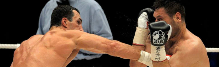 Bing vs. Google boxing